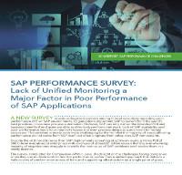 Informe 2014: Desafíos de rendimiento SAP