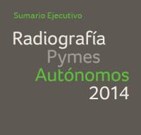 Radiografía Pymes Autónomos 2014. Sumario ejecutivo