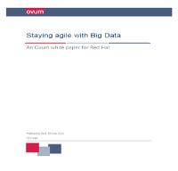 Mantenerse ágil con el Big Data