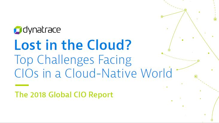 The 2018 Global CIO Report