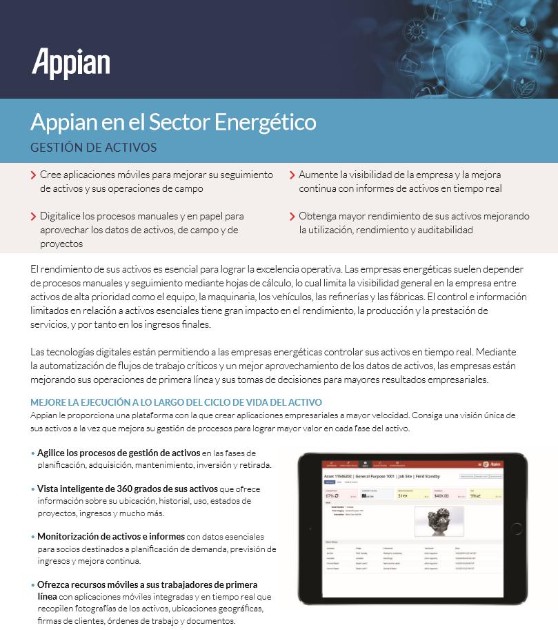 Appian en el Sector Energético: Gestión de activos
